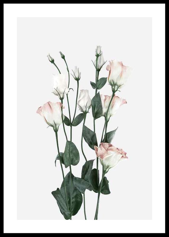 Rose Bouquet No2