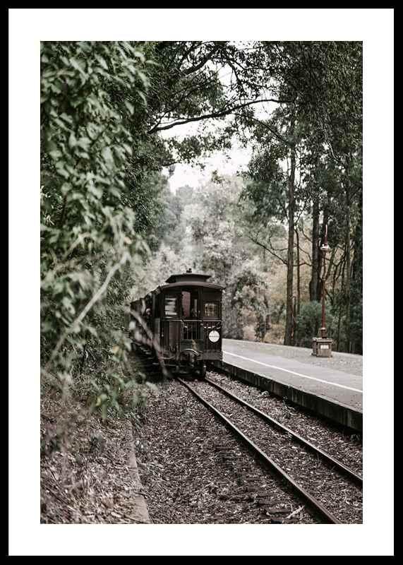 Train By Railroad-0