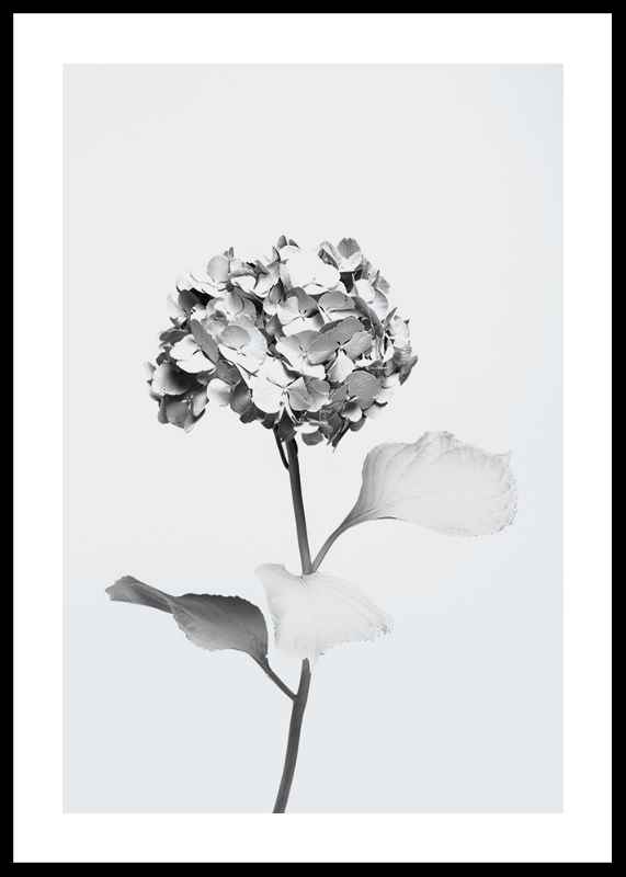 White Painted Flower-0