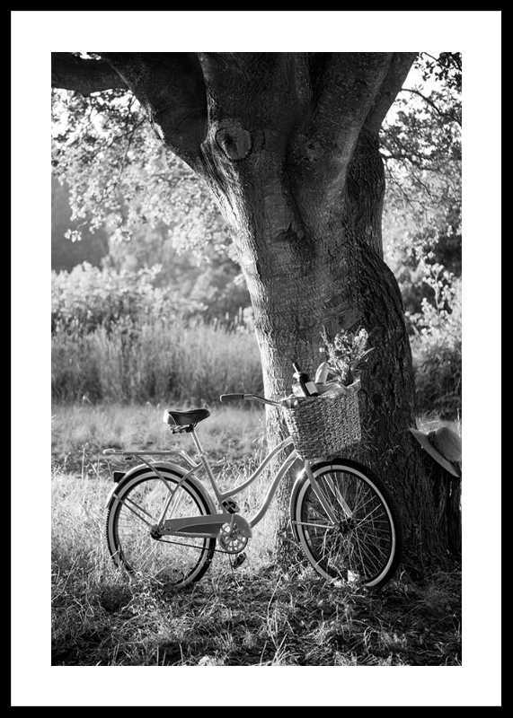 Bicycle With Picknick Basket