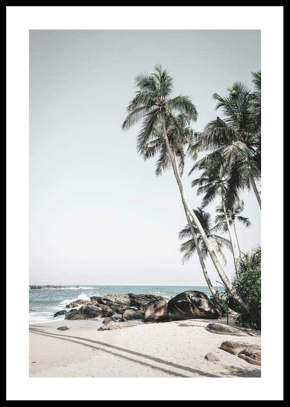 Anantara Palm Trees