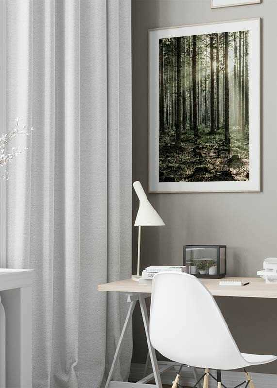 Sunbeam Forest-4