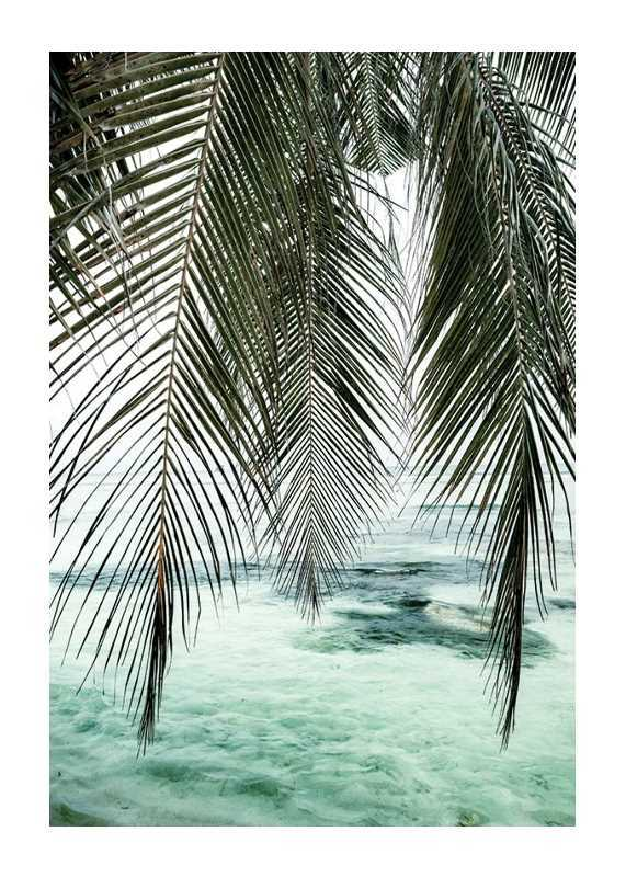 Palm Curtain-1