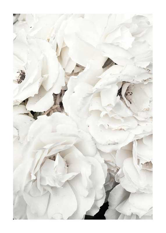 Bouquet Of White Peonies-1