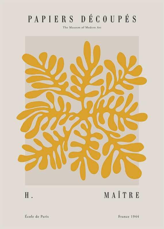 Matisse Papiers Decoupes No2-1