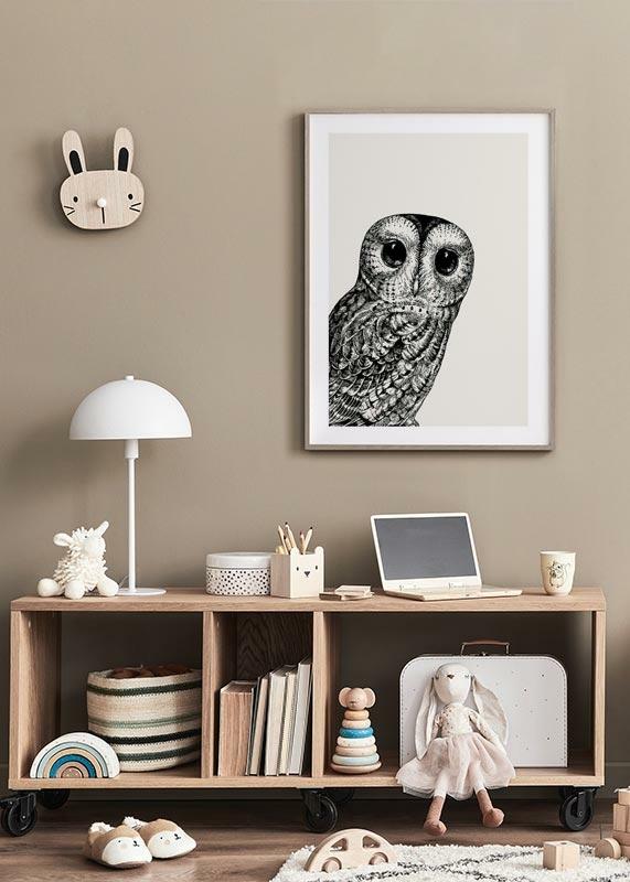 Watching owl-4