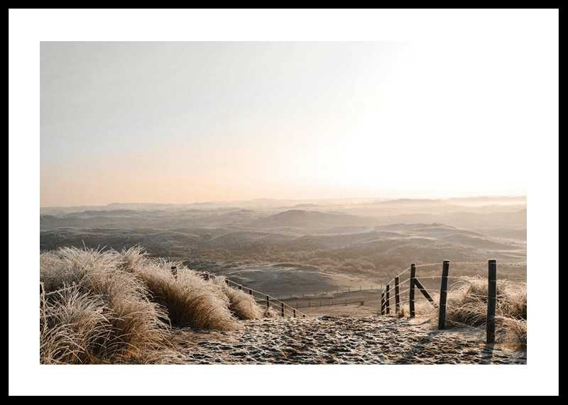 Desert View-0