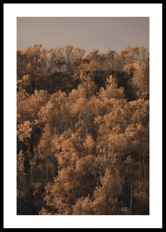 Autumn Colored-0